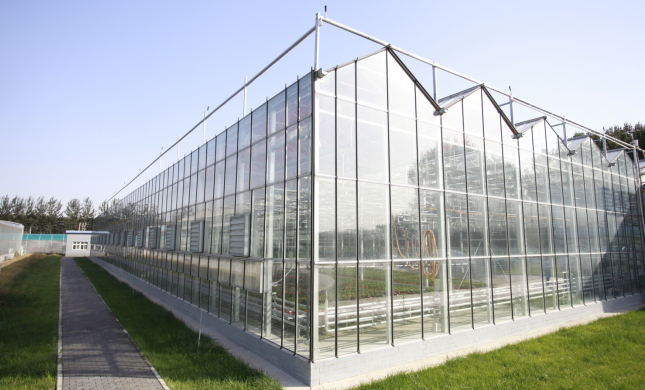 Leading Greenhouse Exporter From China Gulf Agriculture