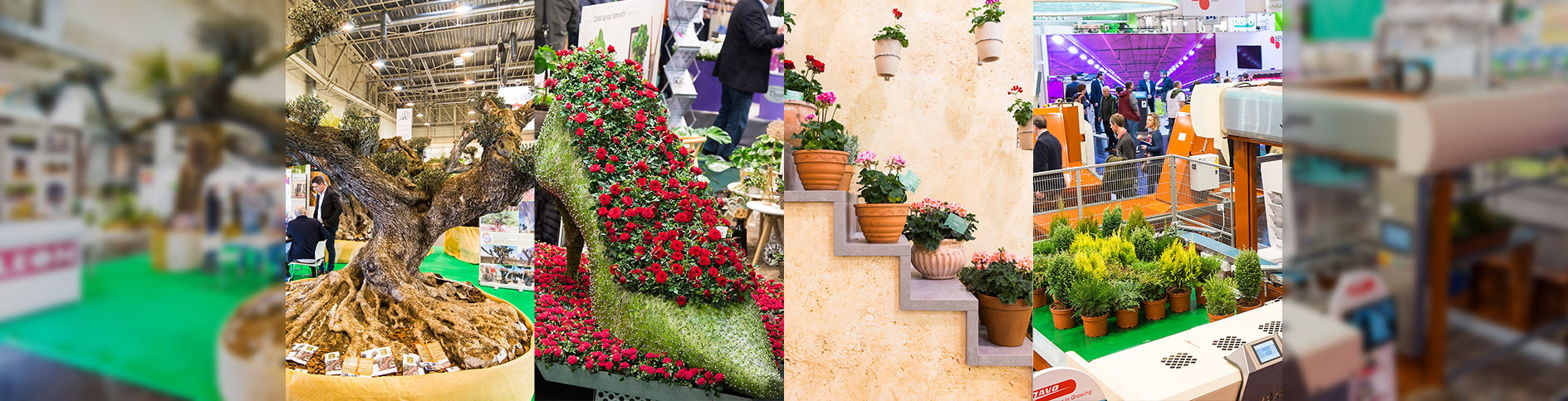 IPM ESSEN 2018: 36th World's Leading Fair for Horticulture with New Site Situation