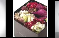 'Alissar Flowers' opens new store at Four Seasons Burj Alshaya, Kuwait