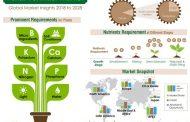 Foliar Fertilizer Market Witnessing Increasing Penetration of Nitrogen-based Variants; Global Demand to Surpass 3 Million Metric Tons by 2028
