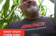 BRANDT Foliar Nutrients, Enzyme Technology Help Randy Dowdy Become New Corn King