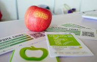 Interpoma China: New location Shanghai for the third edition