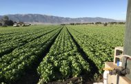 GROWSTREAM - THE WORLD'S FIRST AND ONLY PLANT-RESPONSIVE IRRIGATION SYSTEM