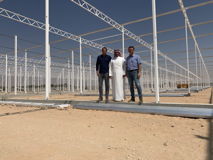 Large Scale 44 Hectares Greenhouse Vegetable Complex In The Kingdom Of Saudi Arabia Gulf Agriculture