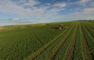 Barr-Ag - Canadian farm-based forage, processor and exporter