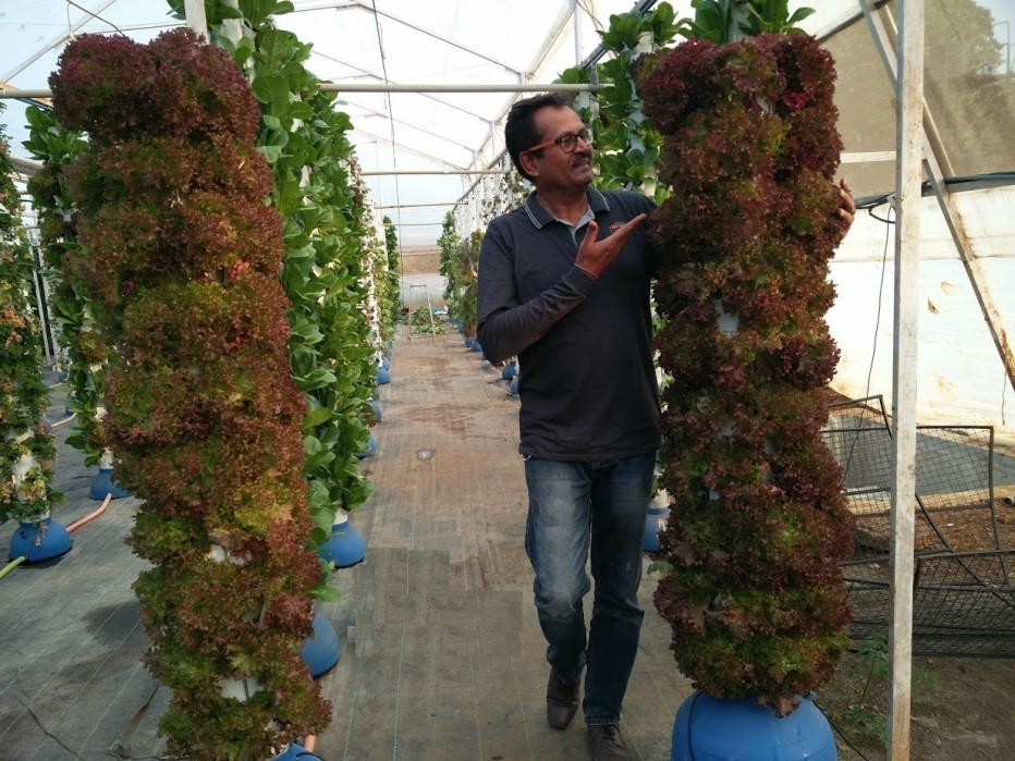Vertical Aeroponics Farming-  Sustainable- Viable- Profitable – Future of farming!!