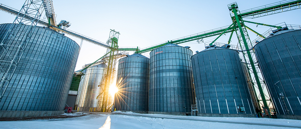 Poor corn condition leads to storage challenges and dangers
