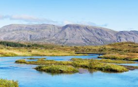FAO leads the way to clearer peatland mapping and monitoring