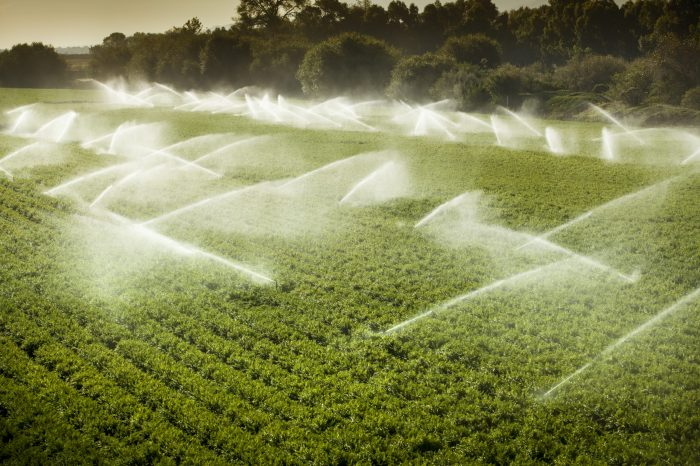 Irrigating With Mobilize Increases Yield While Lowering Costs
