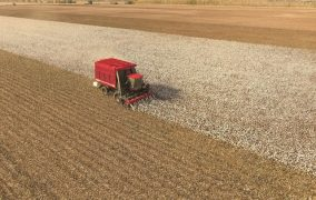 CNH Industrial brands delivering over 360 units to Uzbekistan to support cotton harvest