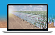 Blockchain in Agriculture: Solving Agri-Food Supply Chain Issues with New-Tech