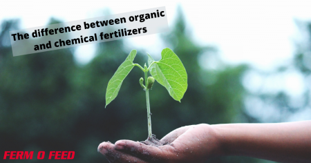 The difference between organic and chemical fertilizers