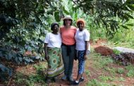More than meets the eye: 'Living Farms' – farming cooperative 'Limbua Group' in Kenya