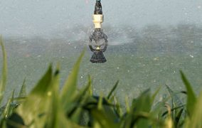 Save Energy with Low-Pressure Sprinklers and Pressure Regulators