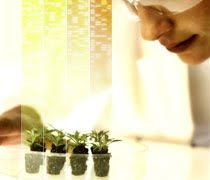Bayer opens application window for Grants4Ag