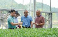 Pioneering in Southern China - State of the art young plant nursery to supply the whole region with strong & healthy vegetable seedlings