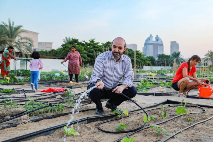 New Season of 'Community Farm' at Dubai Silicon Oasis