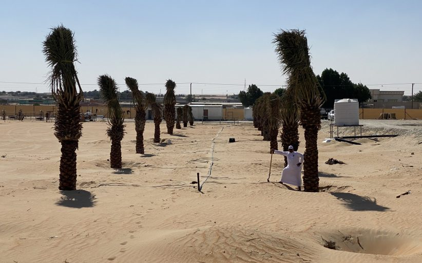 RDI GROWSTREAM™ PLANT-RESPONSIVE SYSTEM BEGINS TRANSFORMATION OF DESERT FARMS