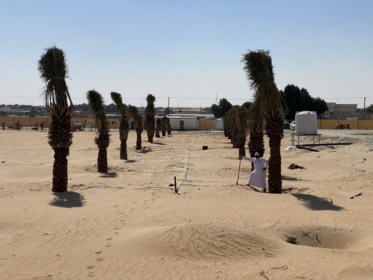 RDI GROWSTREAM™ PLANT-RESPONSIVE SYSTEM BEGINS TRANSFORMATION OF DESERT FARMS