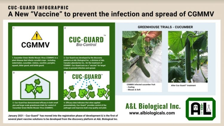 A&L Biological Inc. moves first commercial products into the registration phase