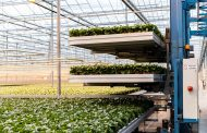Demand for horticultural solutions changes